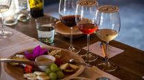 Vineyards, Wine Tasting and Pairing in San Miguel, San Miguel de Allende, Wine Tasting & Winery...