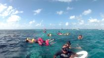 Hol Chan and Turtle Garden Snorkeling Tour, Belize City, Ports of Call Tours