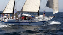Spirit - Whale and Dolphin Watch with a Sunset on a 54-Foot Sailing Yacht, San Diego, Dolphin &...