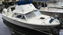 Rent a boat for 1 day, Faro, Day Cruises
