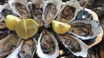 Seafood lunch in culatra Island, Albufeira, Private Sightseeing Tours