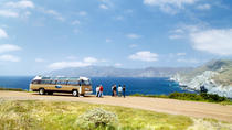Catalina Island Day Trip from Anaheim or Los Angeles with Avalon Tour, Anaheim & Buena Park, ...