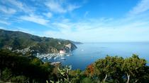 Catalina Island Day Trip from Anaheim or Los Angeles with Optional Upgrades, アナハイムとブエナパーク