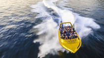 The Ultimate Jet Boat Ride in Sydney Harbour, Sydney, Jet Boats & Speed Boats