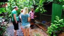 Family day trip to ubud, Kuta, Day Trips