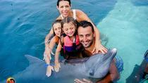 Swimming with Dolphin costomize Ubud Waterfall Uluwatu Sunset Tour, Seminyak, Attraction Tickets