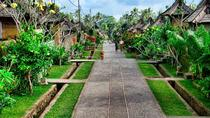 Traditional Night Market Bamboe Forest Twin Hill View Private Tour, Ubud, Market Tours