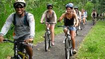 Ubud Echo Cycling Tour, Ubud, Bike & Mountain Bike Tours