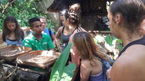 Ubud Rice Terrace Tour, Kuta, Cultural Tours