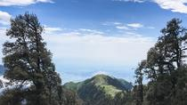 Trek to Triund, Dharmasala, Hiking & Camping