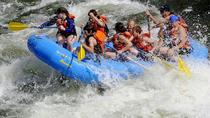 White Water River Rafting in Kullu Manali, Manali, White Water Rafting