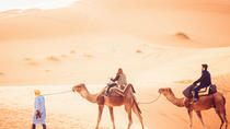 2-Day Sahara Desert Camel Trek in Tunisia, Tunisia, Multi-day Tours