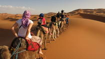 3 Days Tunisian Sahara Camel Trek, Monastir, Multi-day Tours