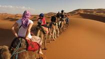 3 Days Tunisian Sahara Camel Trek, Monastir, Day Trips