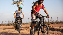 Full-Day Biking in the Palmgrove, Desert, villages & tracks in Douz, Tunisia, 4WD, ATV & Off-Road ...