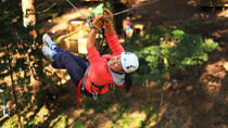 Tree Ropes and Zipline Experience in The Dandenong Ranges, Melbourne, 4WD, ATV & Off-Road Tours