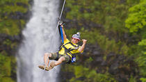 Hilo Shore Excursion: Hamakua Coast Zipline over KoleKole Falls, Big Island of Hawaii, Ports of ...