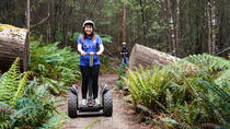 Hollybank Treetops Adventure - Segway Tour, Launceston, 4WD, ATV & Off-Road Tours