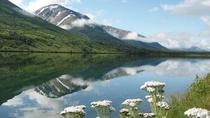 Anchorage to Seward Cruise Transfer and Private Tour, Anchorage, Custom Private Tours