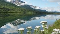 Anchorage to Seward (Large Group), Anchorage, Private Sightseeing Tours