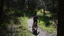 Fat Tire Biking Kincaid Park, Anchorage, Bike & Mountain Bike Tours