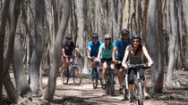 Aventura de mountain bike no Parque Regional You Yangs saindo de Melbourne, Melbourne, Bike & Mountain Bike Tours
