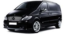 St Petersburg Pulkovo Airport to City Center Minibus Taxi, St Petersburg, Airport & Ground Transfers