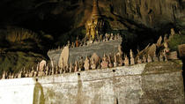 Pak Ou Caves river trip, Luang Prabang, Nature & Wildlife