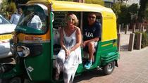 Taj Mahal Tour by Tuk-Tuk, Agra, Cultural Tours