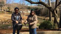 Greenville Haunted Segway Tour, Greenville, Segway Tours