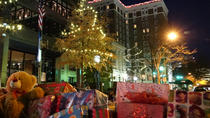 Greenville Holiday Lichter Tour, Greenville, Segway Tours