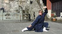 Exclusive Panda & Kungfu Day Tour, Chengdu, Cultural Tours