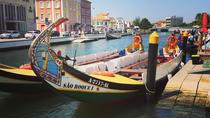 Private tour Aveiro and Coimbra from Porto, Porto, Private Sightseeing Tours