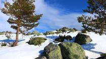 Serra da Estrela day tour From Porto, Porto, Cultural Tours