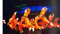 Beijing Private Tour: Shaolin Kung Fu Show and Gourmet Peking Roasted Duck Dinner with Private...