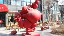 Full-Day Beijing Private Tour: Capital Museum, Olympic Area and 798 Art District, Beijing,...