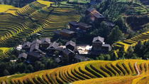 Guilin Bus Tour of Longji Rice Terraces at Jinkeng Village, Guilin, Day Trips