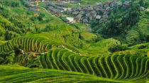 Incredible Longsheng Day Tour to Longji Rice Terraces and Zhuang Yao Culture from Guilin, Guilin, ...
