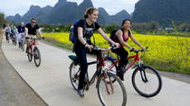 One-Day Li River Cruise with Biking Tour in Yangshuo, Guilin, Day Cruises