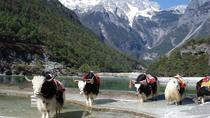 Private Day Trip to Yak Meadow at Jade Dragon Snow Mountain and Shuhe Ancient Town from Lijiang, ...