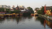 Private Nanjing Sightseeing Day Trip from Shanghai by Train including Lunch, Shanghai, Rail Tours