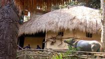 Sanyas Deer Park and Valley Resort Day Tour on Hainan Island, Sanya, Day Trips