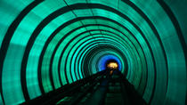 Shanghai Urban Engineering Tour: Jin Mao Tower and Bund Sightseeing Tunnel, Shanghai, Private ...