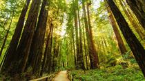 Best Day in San Francisco with Muir Woods