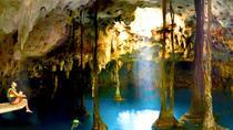 Xenotes Oasis Maya: Cenotes Adventure from Playa del Carmen, Playa del Carmen, Day Trips