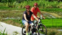 Electric bicycle tour in quaint South Ubud, Ubud, Bike & Mountain Bike Tours