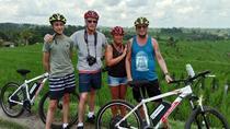 Jatiluwih full day e-bike cycling with picnic lunch & trekking program, Ubud, Bike & Mountain Bike...