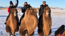 Magic Alex tour, Ulaanbaatar, Multi-day Tours