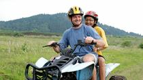 St Lucia Shore Excursion: ATV Tour, St Lucia, Half-day Tours