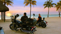 Independent 3-Day Harley-Davidson Tour from Miami, Miami, Swim with Dolphins